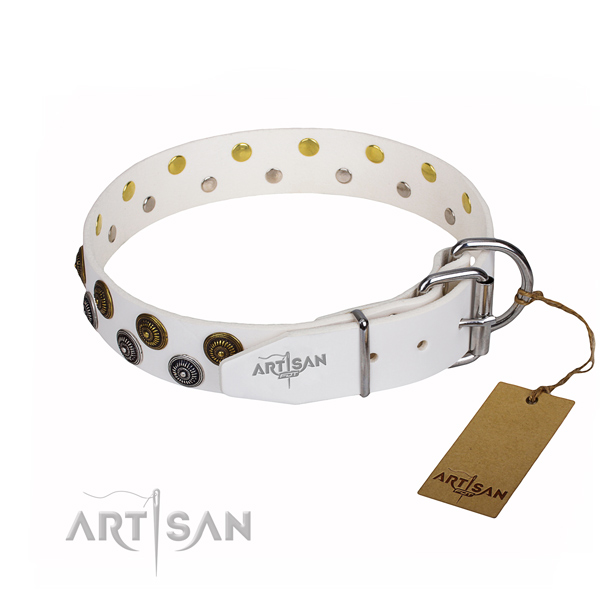 Versatile leather collar for your stunning dog