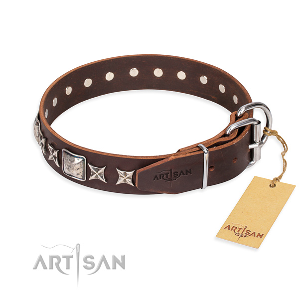 Functional leather collar for your noble four-legged friend