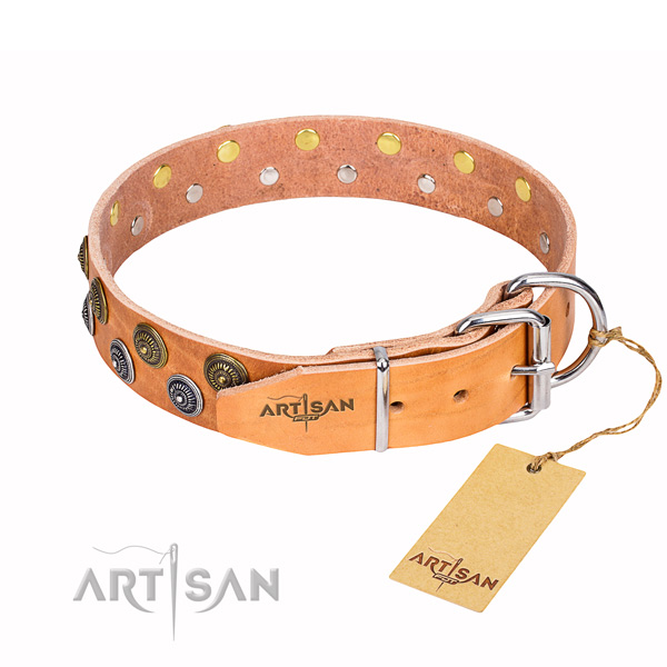 Hardwearing leather dog collar with chrome plated hardware