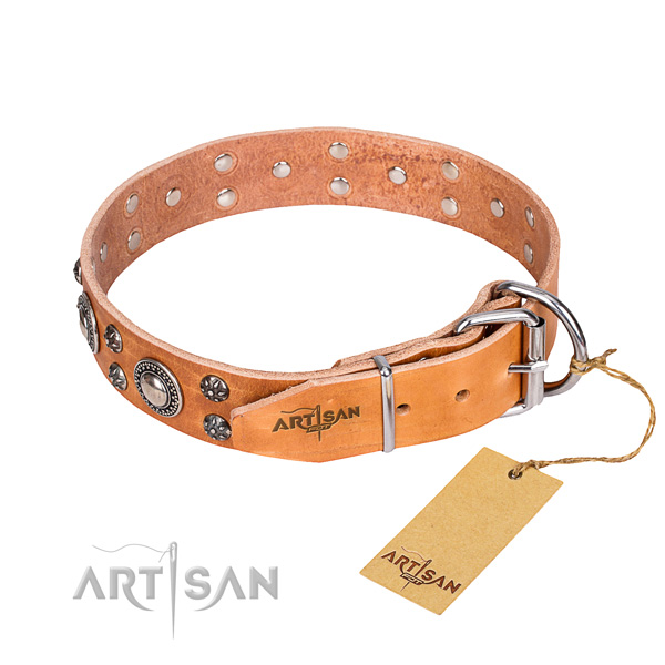 Reliable leather dog collar with corrosion-resistant fittings