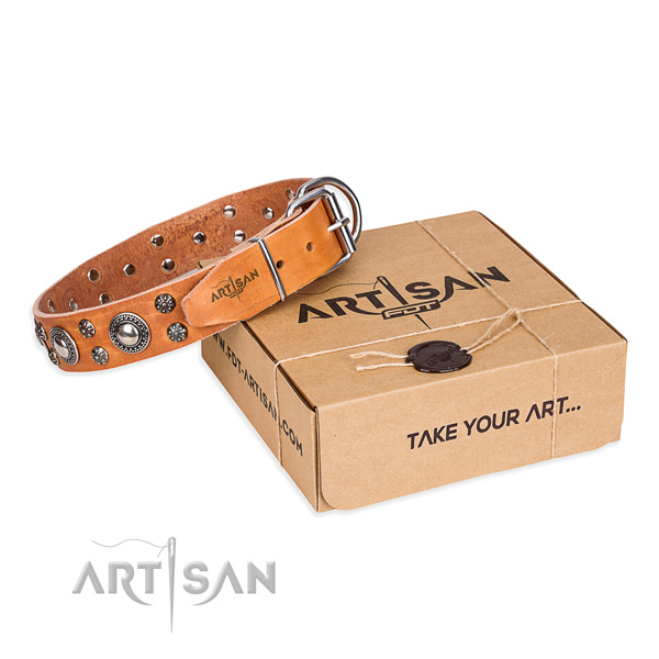 Everyday leather dog collar with stunning decorations