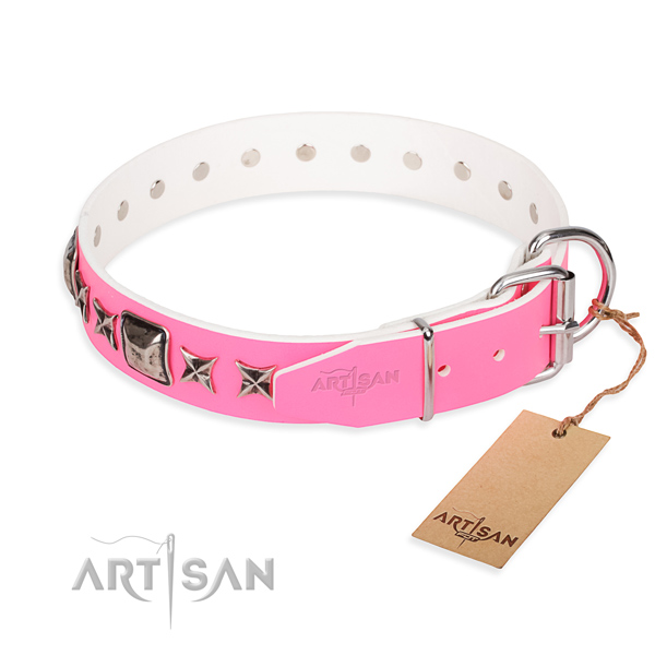Durable leather dog collar with sturdy elements