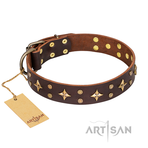 Long-lasting leather dog collar with durable elements