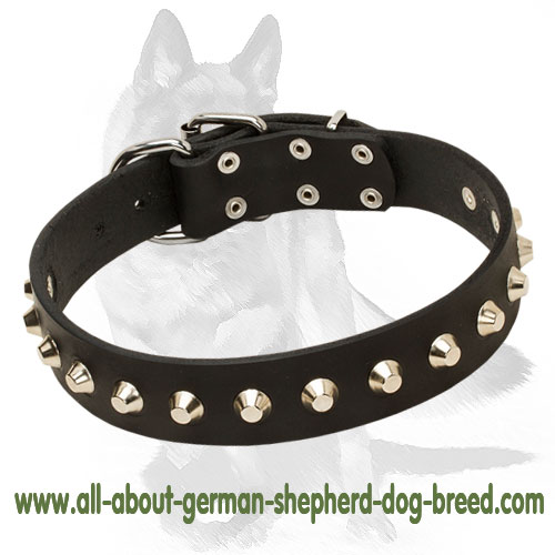 Refined leather dog collar with buckle