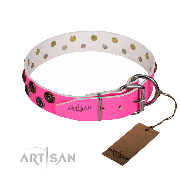Sturdy leather dog collar with rust-resistant fittings