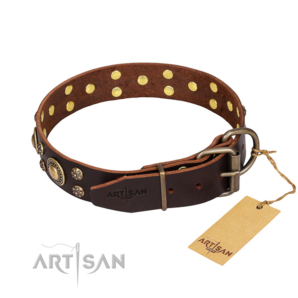 Everyday leather collar for your favourite canine