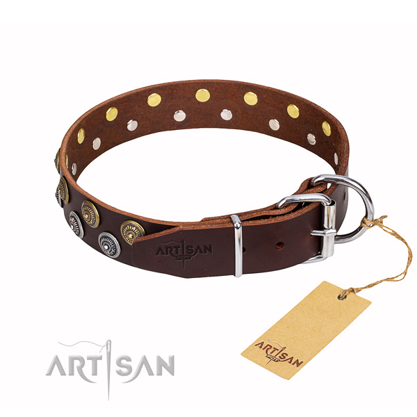 Durable leather collar for your darling canine