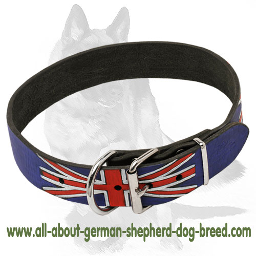 Leather dog collar with steel nickel plated fittings