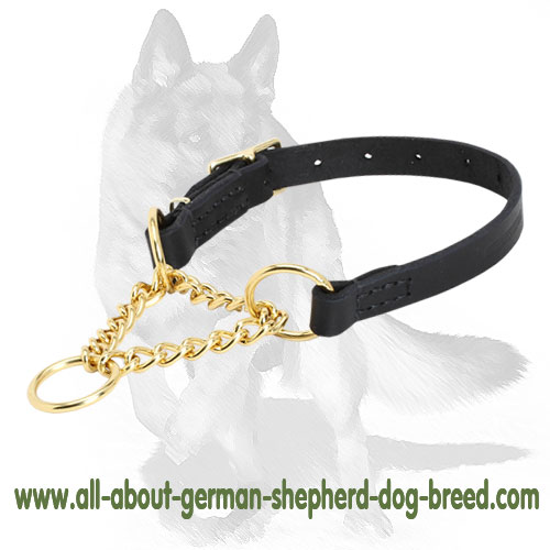 Martingale dog collar with smooth surface