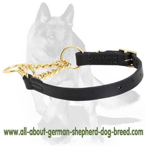 Martingale dog collar with leather part