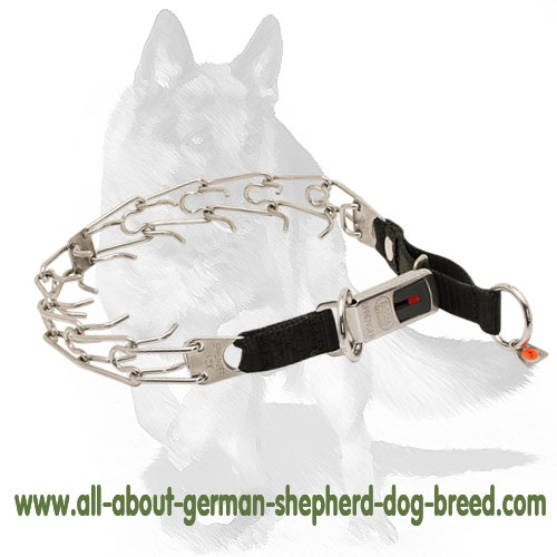 Easy to handle pinch dog collar