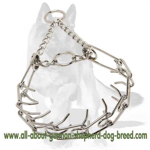 Strong pinch dog collar with removable links