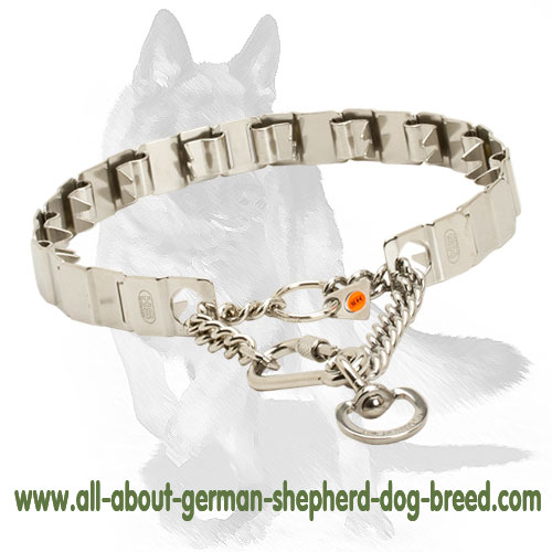 Safe pinch dog collar with reliable lock