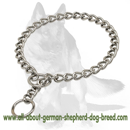 Durable chrome plated choke dog collar