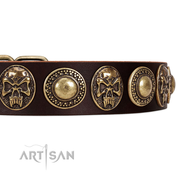 Full grain leather dog collar with embellishments for comfortable wearing