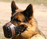 "German Shepherd training Leather dog muzzle ""Dondi""-plus style"