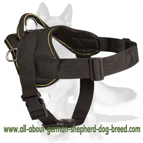 Water-resistant nylon dog harness