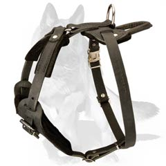 Dog Harness with Soft Chest Plate
