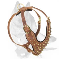 Spiked Harness with wide Straps