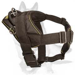 Harness with cushion-like chest plate
