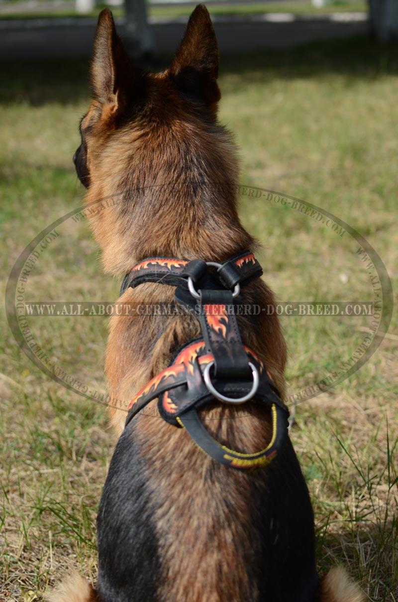 German Shepherd Dog leather harness hand painted big handcrafted leather dog harness for german shepherds [h1fl 1070