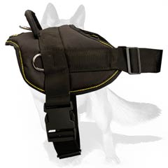Easy adjustable all-weather Harness