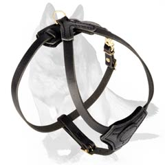 Perfect Harness for socializing your puppy