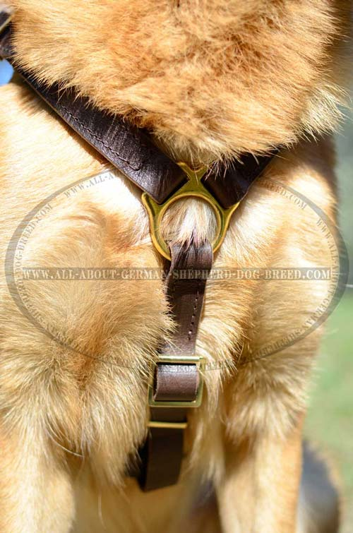 German Shepherd Dog Harness with adjustable straps