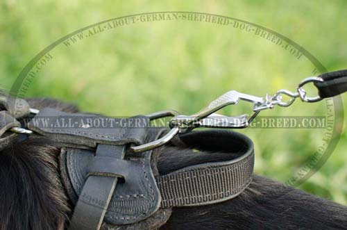 Convenient Handle for Leather Harness for German Shepherd