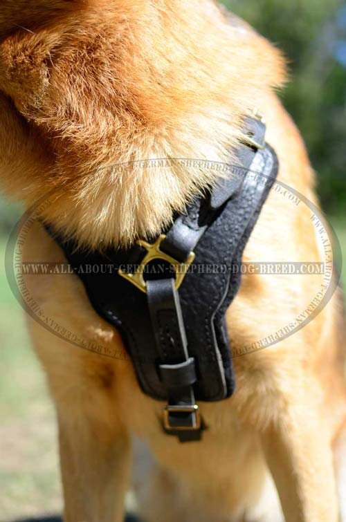 German Shepherd Dog Harness with Padding