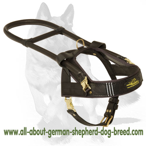 Reliable leather dog harness for guide dogs