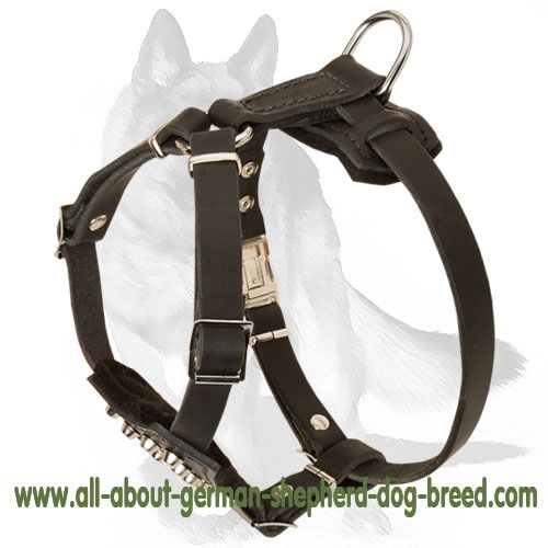 Leather Dog Harness for Walking Puppies and Small Breeds