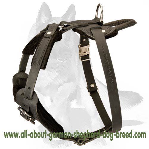 4 ways adjustable leather dog harness