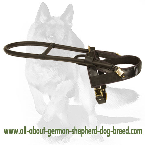 Guide and Assistance leather dog harness with handle