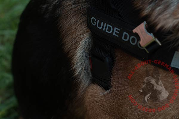 Nylon German Shepherd harness with removable ID patches
