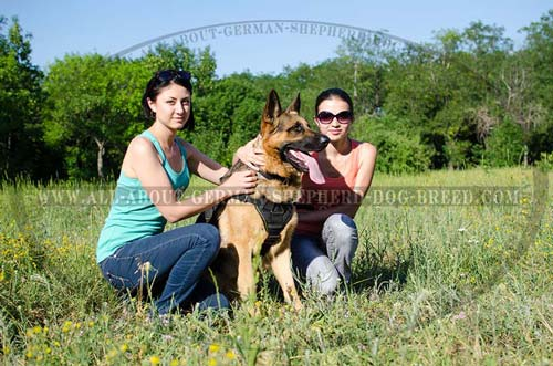 German Shepherd Nylon Harness for Daily Training