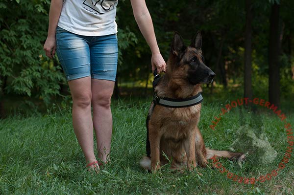 Lightweight nylon dog harness for German Shepherd with reflective trim and handle