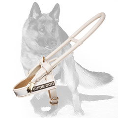White leather dog harness for fashionable walking