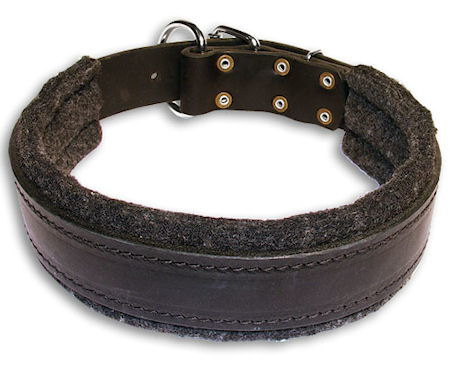 BUY 1.5 inch Leather Collar for German Shepherd