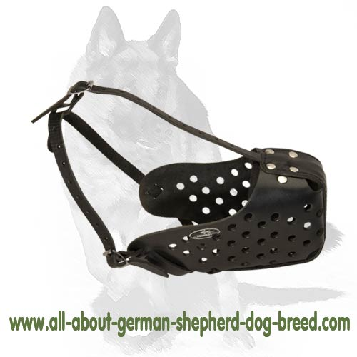 'Echelon' - German Shepherd Dog Leather Basket Muzzle
