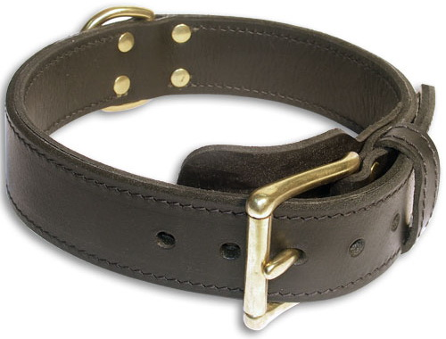 Alsatian Dog Leather Black collar 23'' /23 inch dog collar-c33nh