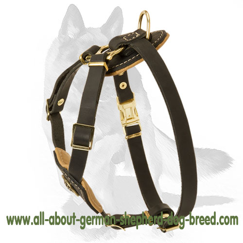 'Pup Culture' Royal Leather Tracking/Walking Dog Harness