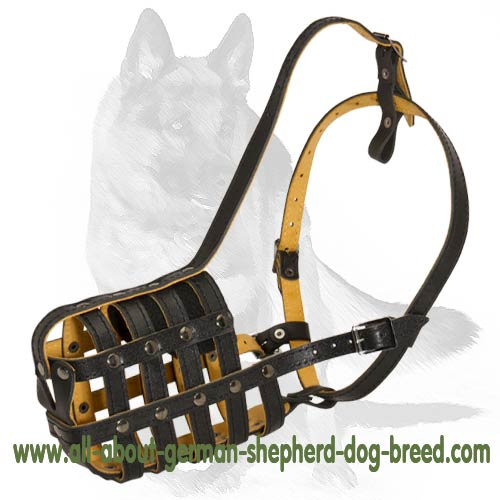 Everyday Light Weight Royal German Shepherd Muzzle