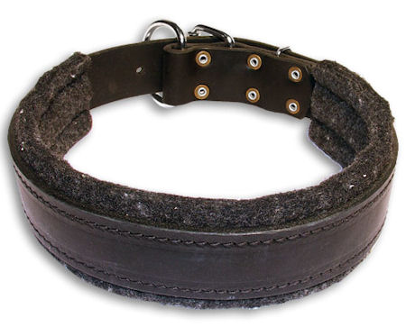 Leather Padded Black collar 26'' for Alsatian Dog /26 inch dog collar-C24