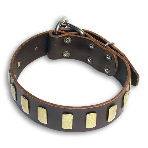 Custom Leather Brown collar 25'' for Alsatian Dog /25 inch dog collar-S33p