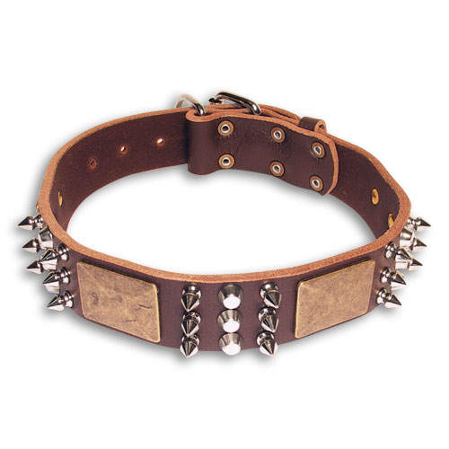 Walking GSD Shepherd Brown dog collar 18 inch/18'' collar- C86