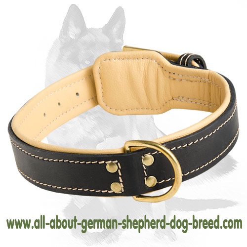 Rich Nappa padded leather collar
