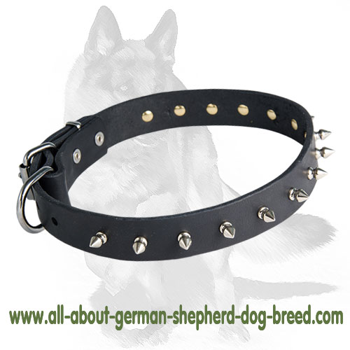 Chic Spiked Dog Collar for German Shepherd