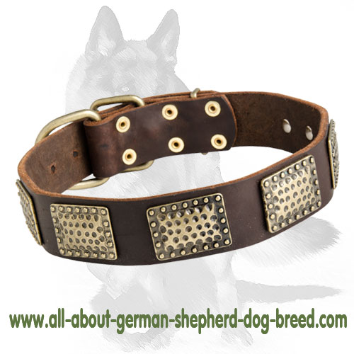 Gorgeous Warlike Leather Collar for German Shepherd