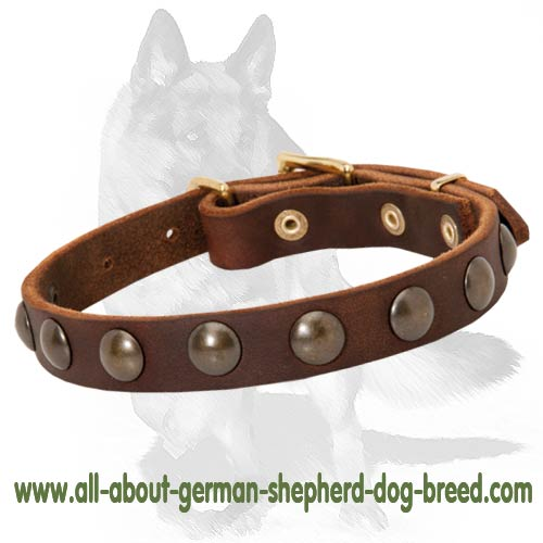 Handcrafted German Shepherd Leather Collar with Luxurious Decorations